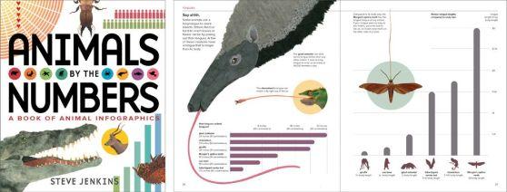 animal.infographics